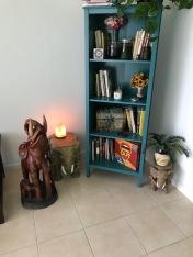 I built this book case!