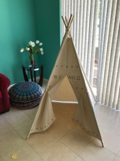 My living room has a TeePee!